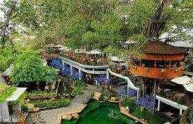 """Thiên đường """"cà phê trên cây"""" độc đáo nhất Sài Gòn"""
